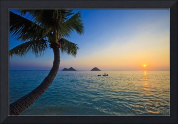 Hawaiian sunrise at lanikai Beach
