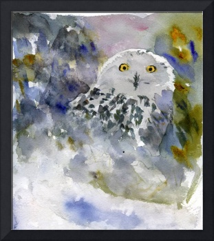 Snowy Owl, Watercolor Art