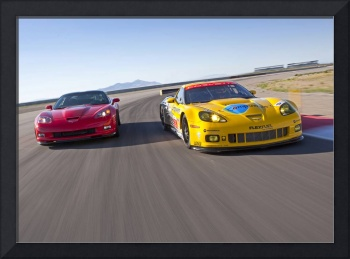 Chevrolet Corvettes ZR1 and C6 R 2010