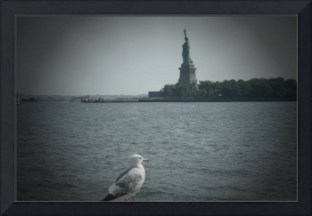 BIRD EYEING LIBERTY