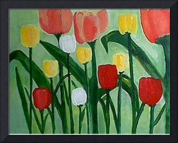 Big Colorful Tulips