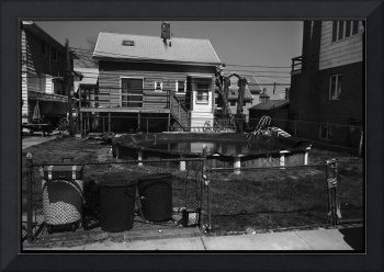 Backyard Pool, Brooklyn, New York