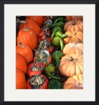 Gourds and Pumpkins 0191 by Jacque Alameddine