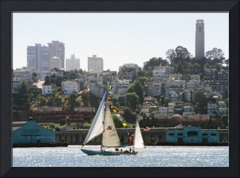 San Francisco Sailboat