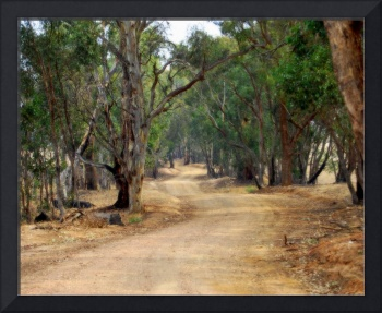 Winding dirt road, country Australia #1