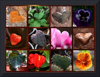 Heart collage 4