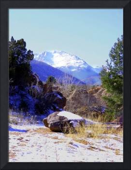 Pikes Peak framed by Evergreens 2910