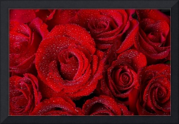 Red Rose Bouquet and Water Drops