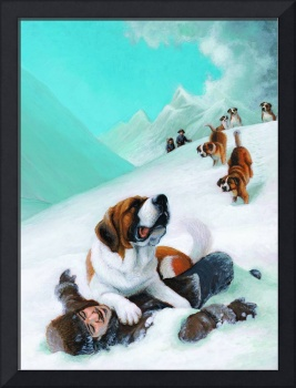 The Saint Bernard