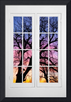 Old 16 Pane White Window Colorful Sunset Tree View