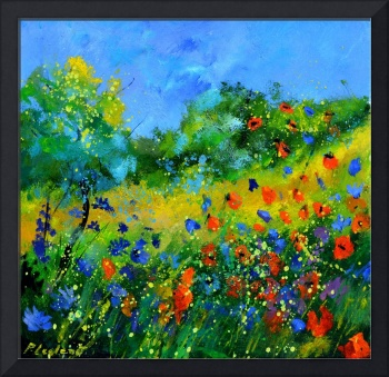 poppies cornflowers 44