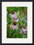 Cone Flowers and Twigs by D. Brent Walton