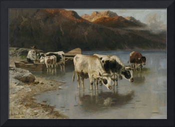 Christian Mali shepherd with cows on Seeufer