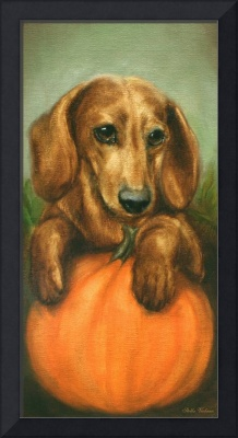 Pick Me! Dachshund Puppy and a pumpkin by Violano