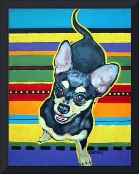 Four on the Floor on Serape - Funny Chihuahua Dog