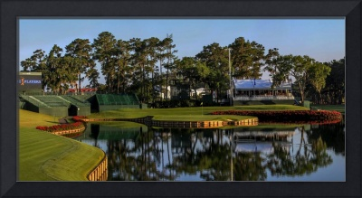 TPC Sawgrass Golf Course Hole 17 Photo 1 Wide