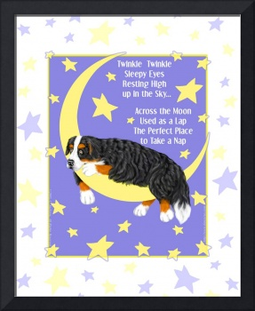 Bernese Mountain Dog Twinkle Twinkle