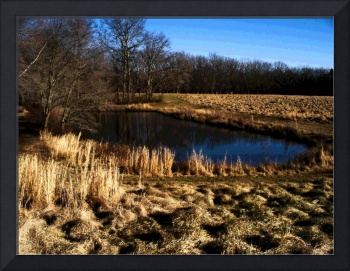 The Pond  Late Winter