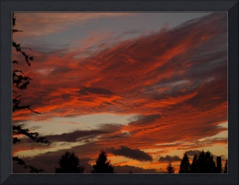 Lobster Claw Sunset