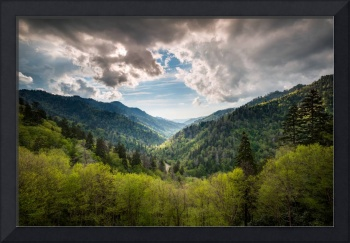 Great Smoky Mountains Landscape Photography - Spri