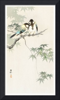 Japanese Birds on Maple Branch by Ohara Koson