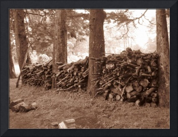 Wall of Firewood