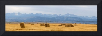 Rocky Mountain Front Range Agriculture Panorama