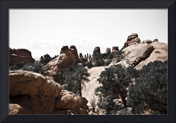 Arches National Park Landscape (9768)