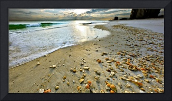 Beach Shells Sunset Print Fine Art Landscape
