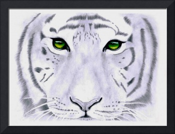 White Tiger - Green Eyes