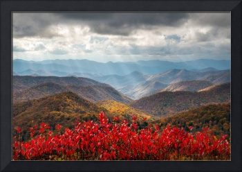 Blue Ridge Parkway Fall Foliage - The Light