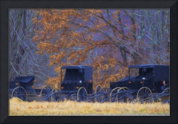 Amish Buggies In the Rain