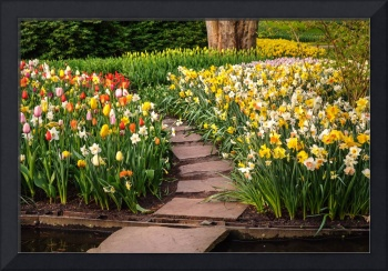 Colorful World of Keukenhof. Tiled Path through Fl