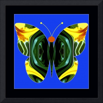 Abstract_Butterfly-05