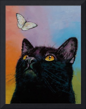 Black Cat Butterfly