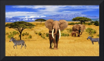 Elephant Animals of Africa 2