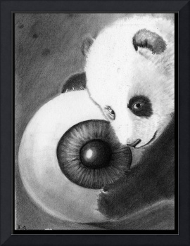 Panda And Eyeball