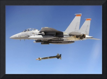 An F 15E Strike Eagle drops a GBU 28 bomb during a