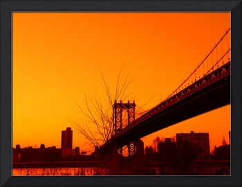 GOLDEN ORANGE BROOKLYN BRIDGE