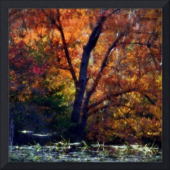 Fall Scene In Franklin Massachusetts