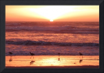 Imperial Beach Sunset