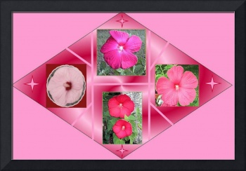HIBISCUS COLLAGE