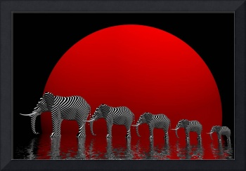elephants and fullmoon