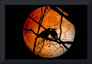 Crows Moon