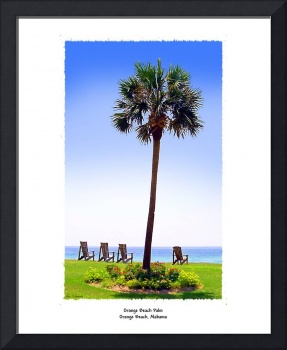 Orange Beach Palm