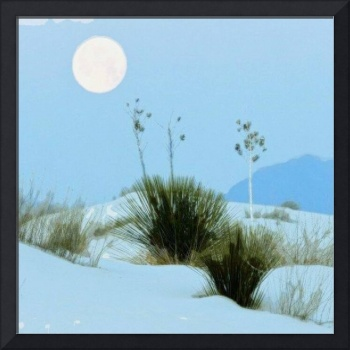 Moon Glow On Desert Snow