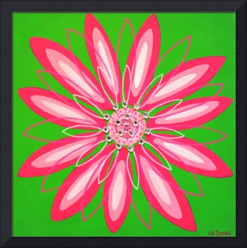 Lime and Pink Flower