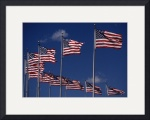 Flags by Dave Wilson