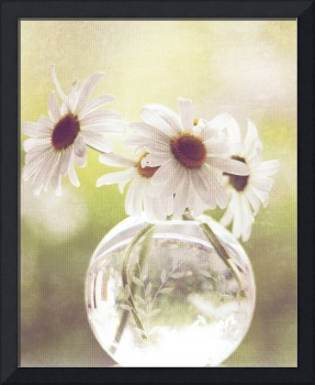 Daisies in clear glass