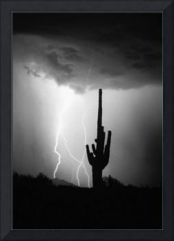 Intertwine Lightning Bolts and Saguaro BW